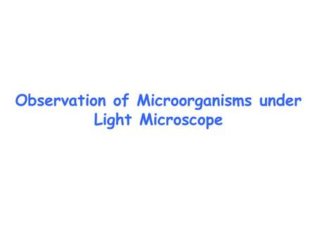 Observation of Microorganisms under Light Microscope.
