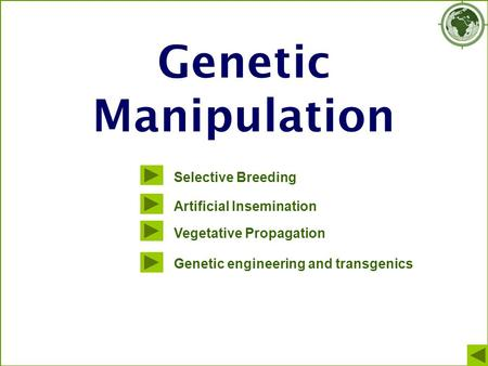 Genetic Manipulation Selective Breeding Artificial Insemination Vegetative Propagation Genetic engineering and transgenics.