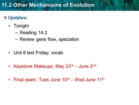 11.3 Other Mechanisms of Evolution Updates: Tonight –Reading 14.2 –Review gene flow, speciation Unit 8 test Friday; vocab Keystone Makeups: May 23 rd –
