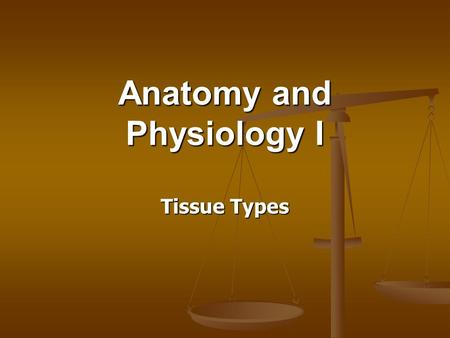 Anatomy and Physiology I Tissue Types. Key Terms Histology: Histology: the study of tissues. the study of tissues. Tissues: Tissues: groups of cells which.
