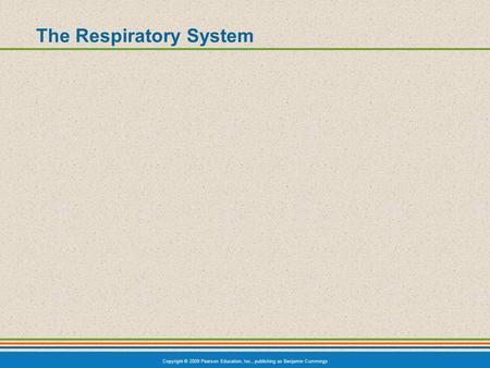 Copyright © 2009 Pearson Education, Inc., publishing as Benjamin Cummings The Respiratory System.