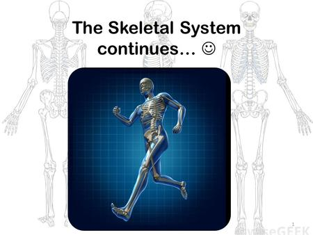 1 The Skeletal System continues…. 2 Skeletal System Parts of the skeletal system: 1.Bones 2.Joints 3.Ligaments 4.Cartilage Separated into 2 main divisions: