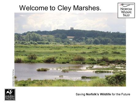 Saving Norfolk's Wildlife for the Future Welcome to Cley Marshes. Photo by: Barry Madden Saving Norfolk's Wildlife for the Future.
