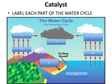 Catalyst LABEL EACH PART OF THE WATER CYCLE 1 1 7 7 2 2 3 3 4 4 6 6 5 5.