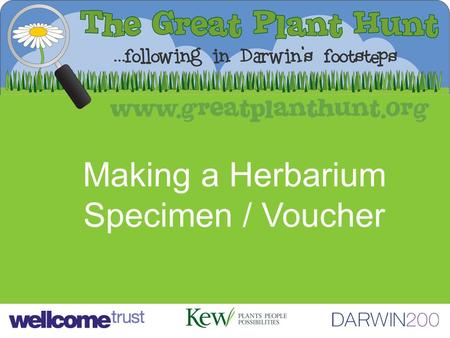 Making a Herbarium Specimen / Voucher