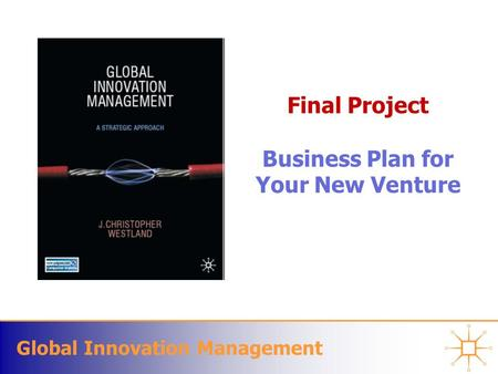 Global Innovation Management Final Project Business Plan for Your New Venture.