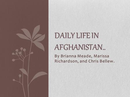 By Brianna Meade, Marissa Richardson, and Chris Bellew. DAILY LIFE IN AFGHANISTAN..