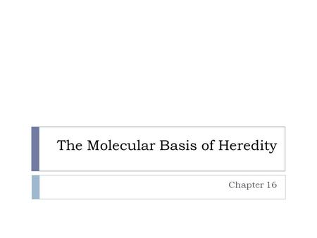 The Molecular Basis of Heredity Chapter 16. 5.5 Nucleic acids store, transmit, and help express hereditary information.