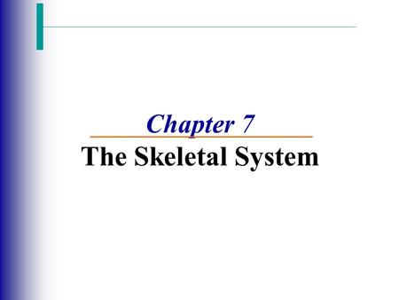 Chapter 7 The Skeletal System. The Skeletal System Slide 5.1 Copyright © 2003 Pearson Education, Inc. publishing as Benjamin Cummings  Parts of the skeletal.