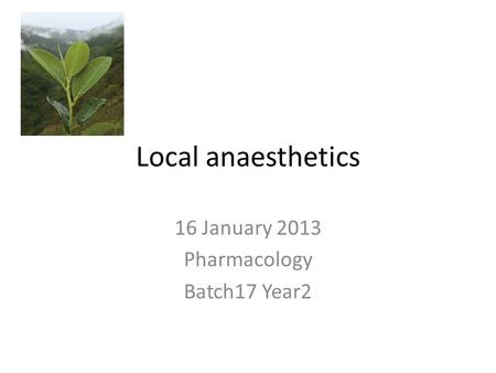 Local anaesthetics 16 January 2013 Pharmacology Batch17 Year2.