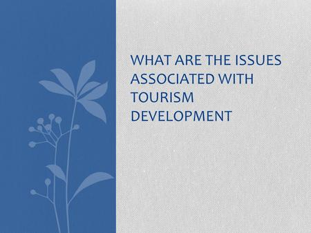 WHAT ARE THE ISSUES ASSOCIATED WITH TOURISM DEVELOPMENT.
