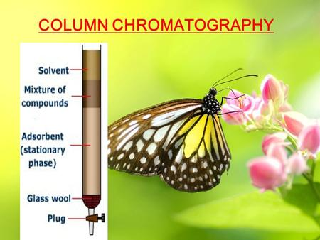 COLUMN CHROMATOGRAPHY. Presented By – Mr. Shaise Jacob Faculty Nirmala College of Pharmacy Muvattupuzha, Kerala India E mail –