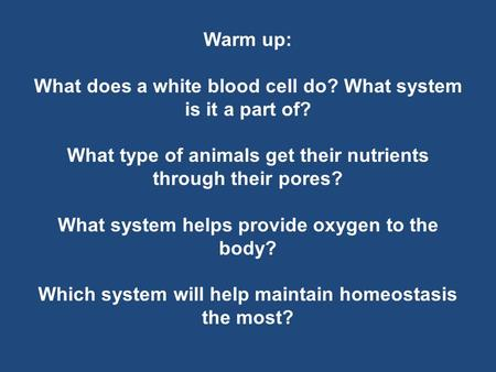 Warm up: What does a white blood cell do? What system is it a part of? What type of animals get their nutrients through their pores? What system helps.