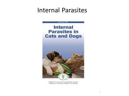 1 Internal Parasites. Definitions Definitive host – Harbors the adult parasite Intermediate host – Harbors the immature parasite Reservoir host – Harbors.