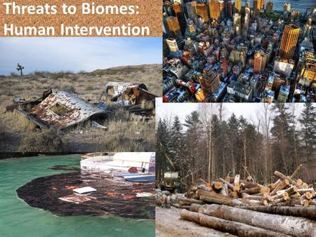 Threats to Biomes: Human Intervention