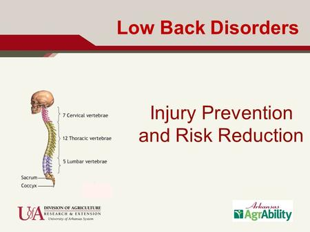 Low Back Disorders Injury Prevention and Risk Reduction.