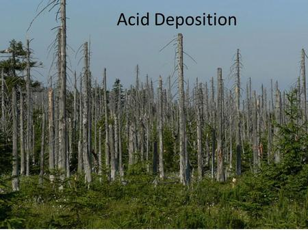 Acid Deposition. Starter https://www.youtube.com/watch?v=v09KnqiY i-c https://www.youtube.com/watch?v=v09KnqiY i-c.