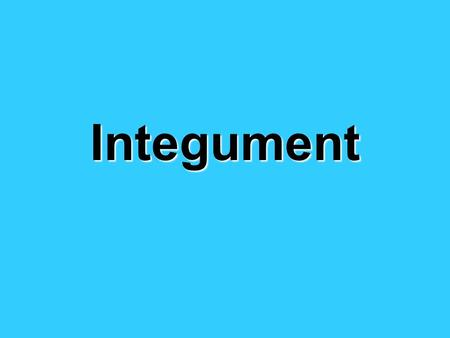 Integument. Functions 1. Protects against infection 2.Protects against water loss 3.Sensory: touch, pressure, pain temperature Homeostasis.