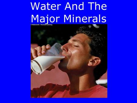 Water And The Major Minerals Water And The Body Fluids Functions of water: –Transport –Structural support for molecules –Participates in metabolic reactions.