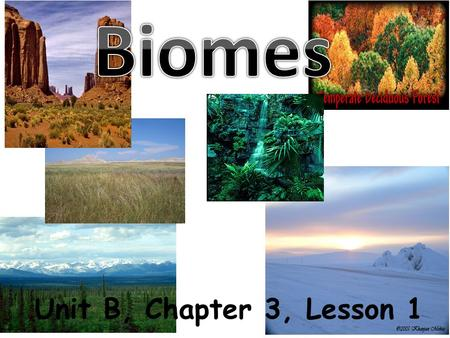 Biomes Unit B, Chapter 3, Lesson 1.