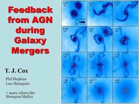 T. J. Cox Phil Hopkins Lars Hernquist + many others (the Hernquist Mafia) Feedback from AGN during Galaxy Mergers.
