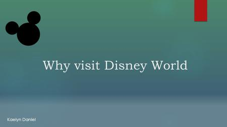 Why visit Disney World Kaelyn Daniel.  Disney World opened in 1971.  Located in Orlando, Florida  Single largest theme park attraction in the world.