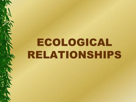 ECOLOGICAL RELATIONSHIPS. Ecology l The study of relationships between organisms and their environment.