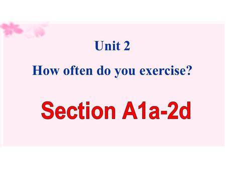Unit 2 How often do you exercise?. What do you usually do on weekends?