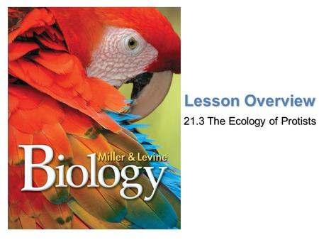 Lesson Overview Lesson Overview The Ecology of Protists Lesson Overview 21.3 The Ecology of Protists.