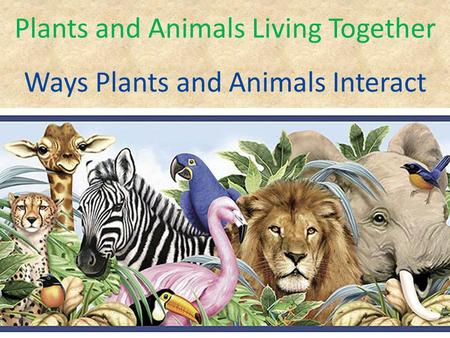 Plants and Animals Living Together Ways Plants and Animals Interact.