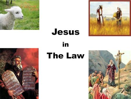 Jesus in the Law Exodus 12 Your lamb shall be without blemish, a male a year old. (5) For our sake he made him to be sin who knew no sin, so that in.
