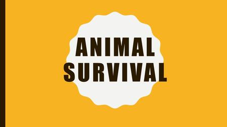 ANIMAL SURVIVAL. OVERVIEW In this unit we will learn about the different roles animals have in ecosystems, what animals need to survive, and the relationships.