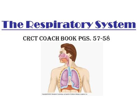 The Respiratory System CRCT Coach Book pgs. 57-58.