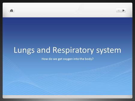 Lungs and Respiratory system How do we get oxygen into the body?
