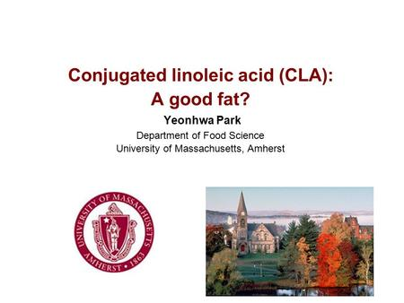 Conjugated linoleic acid (CLA): A good fat? Yeonhwa Park Department of Food Science University of Massachusetts, Amherst.