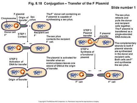 Copyright © The McGraw-Hill Companies, Inc. Permission required for reproduction or display. Fig. 8.18 Conjugation – Transfer of the F Plasmid Slide number.