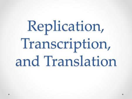 Replication, Transcription, and Translation. Replication Where does replication occur in eukaryotes? Nucleus! In what phase does DNA replication occur?