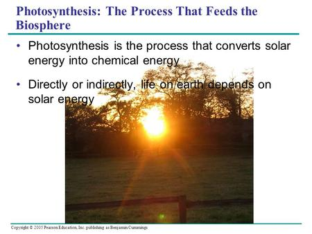Copyright © 2005 Pearson Education, Inc. publishing as Benjamin Cummings Photosynthesis: The Process That Feeds the Biosphere Photosynthesis is the process.