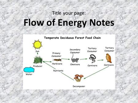 Title your page: Flow of Energy Notes