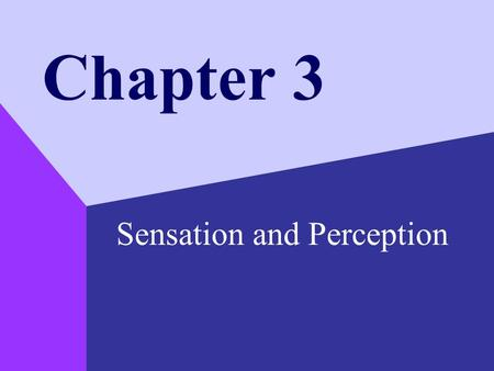 Chapter 3 Sensation and Perception. Copyright © 1999 by The McGraw-Hill Companies, Inc. 2 Detecting and Perceiving the World Sensation –the process of.
