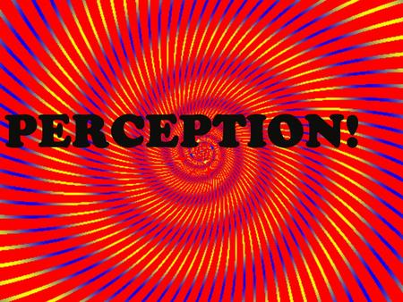 PERCEPTION!. What is perception? Go through your notes and in your own words write down what perception is?