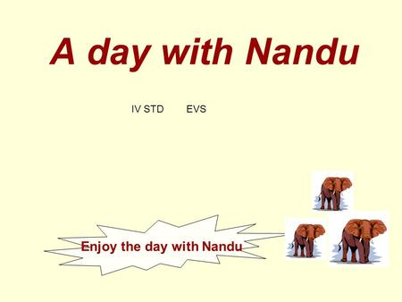 Enjoy the day with Nandu