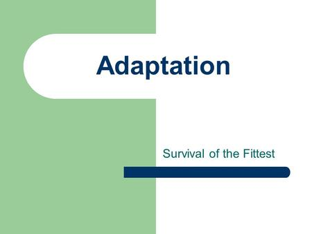 "Adaptation Survival of the Fittest. It's all about traits Acquired Traits Happen After Birth ""LEARNED"" Scars Pierced Ears Learning a Skill Changing Appearance."