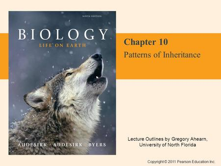 Lecture Outlines by Gregory Ahearn, University of North Florida Copyright © 2011 Pearson Education Inc. Chapter 10 Patterns of Inheritance.