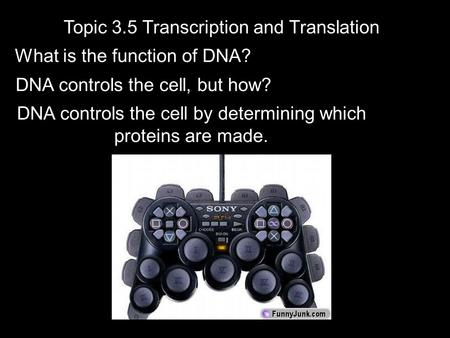 Topic 3.5 Transcription and Translation What is the function of DNA? DNA controls the cell, but how? DNA controls the cell by determining which proteins.