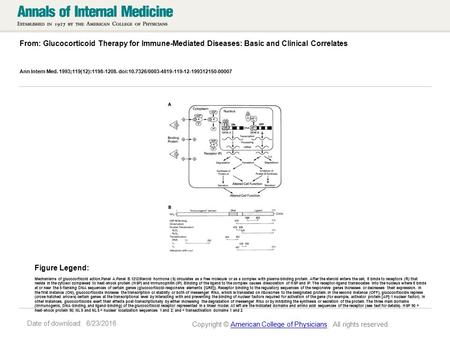 Date of download: 6/23/2016 From: Glucocorticoid Therapy for Immune-Mediated Diseases: Basic and Clinical Correlates Ann Intern Med. 1993;119(12):1198-1208.