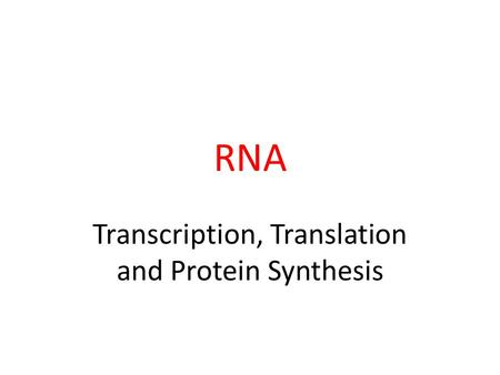 RNA Transcription, Translation and Protein Synthesis.