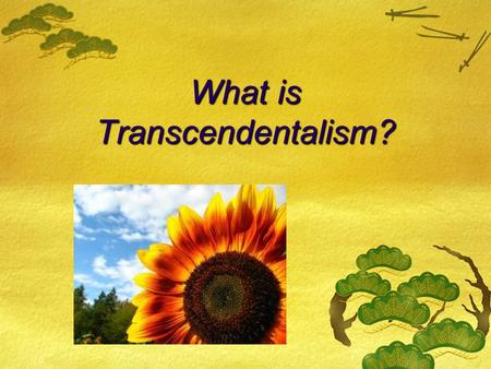 What is Transcendentalism?