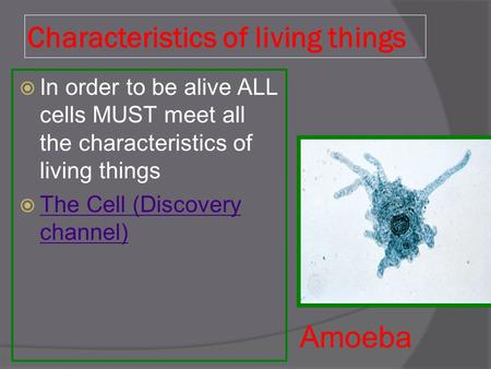 Characteristics of living things  In order to be alive ALL cells MUST meet all the characteristics of living things  The Cell (Discovery channel) The.