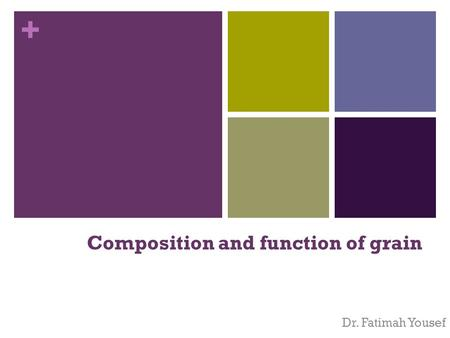 + Composition and function of grain Dr. Fatimah Yousef.